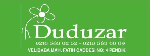 Duduzar